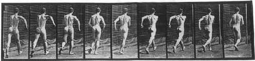 [Eadward Muybridge reel of nude walking man]